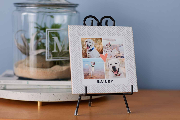 mothers day gift ideas dog lover desk photo